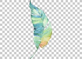 水绘绿叶,绿色和棕色叶PNG剪贴画水彩画,水彩叶子,飞溅,叶,海报,