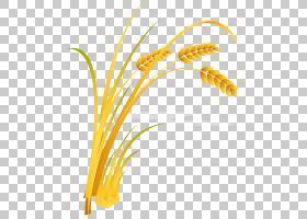 米卡通,米PNG剪贴画食品,叶,文本,橙色,草,稻稻,稻包,农业,花卉,1