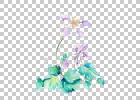 花艺设计水彩绘画插图,水彩花卉PNG剪贴画水彩叶子,插花,画,紫罗
