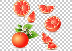 葡萄柚汁柚橙,红葡萄柚材料PNG剪贴画食品,摄影,橙色,柑橘,生日快