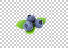 蓝莓黑莓果,蓝莓眼睛保护PNG剪贴画蓝色,食品,叶,蓝莓,抗氧化剂,