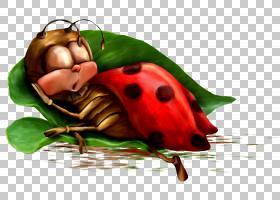夜动画早晨摄影,瓢虫PNG剪贴画昆虫,睡眠,时间,卡通,水果,互联网,