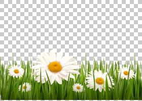 天蓝色绿草,草PNG剪贴画蓝色,云,电脑壁纸,卡通草,人造草,花卉,卡