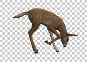 复活节鹿绘图,oswald幸运兔PNG剪贴画鹿茸,3D计算机图形学,哺乳动