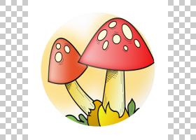 常见的蘑菇真菌,蘑菇卡通的PNG剪贴画食品,花卉,水果,艺术,可缩放