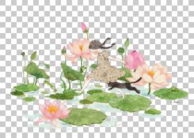 Nelumbo nucifera儿童绘画手绘莲花PNG剪贴画水彩画,皮脂类植物,