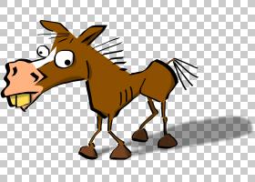马卡通,疯狂搞笑的PNG剪贴画马,哺乳动物,摄影,马大头钉,野生动物