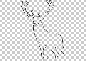 鹿画驯鹿PNG剪贴画鹿角胶,白,哺乳动物,脊椎动物,单色,头,动物,野