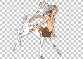 鹿绘画艺术马,水彩鹿PNG剪贴画马,哺乳动物,动物,carnivoran,脊椎