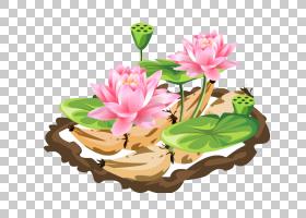 花艺设计花盆开花植物草本植物,莲花PNG剪贴画插花,画,手,卡通,金