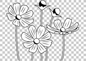 花艺设计黑白单色绘画,花PNG剪贴画白色,单色,对称,植物茎,卡通,
