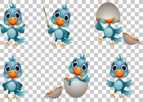 鸭子绘图,孔雀PNG剪贴画动物,卡通,封装的PostScript,royaltyfree