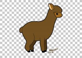 羊驼绘图骆驼卡通,羊驼PNG剪贴画杂项,哺乳动物,铅笔,食肉动物,狗