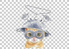 苏格兰折叠小猫水彩绘画虎斑猫,创造性的水彩猫,猫佩带的盔甲PNG