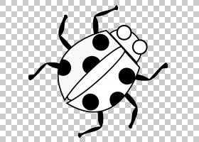 软件错误免费内容动画卡通瓢虫PNG剪贴画单色,网站,臭虫,线,线条