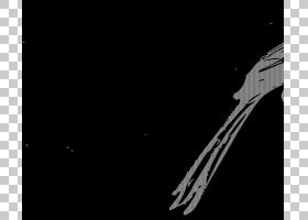 鸟剪刀尾的捕蝇器,剪刀PNG剪贴画铅笔,动物,分支,脊椎动物,单色,