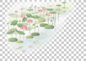 墙贴花花莲花nucifera,手绘莲花PNG剪贴画爱情,水彩画,画,叶,中国