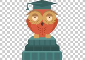 猫头鹰鸟,猫头鹰PNG剪贴画动物,毕业仪式,脊椎动物,猫头鹰,卡通,