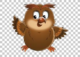 猫头鹰鸟卡通猫头鹰PNG剪贴画动物,鸡形目,鸡,动物群,动物,免版税