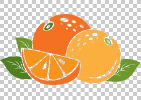 橘子App Store Auglis,橙色卡通橙色PNG剪贴画卡通人物,天然食品,