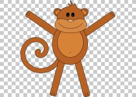 猴子绘图,猴子PNG剪贴画哺乳动物,脸,动物,猫像哺乳动物,食肉动物