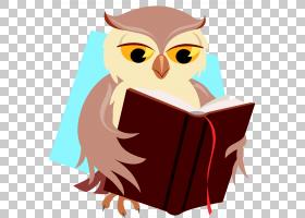 小猫头鹰,猫头鹰PNG剪贴画动物,脊椎动物,猫头鹰,虚构人物,免版税