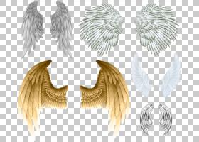 魔鬼天使翼,水牛翅膀PNG剪贴画虚构人物,桌面壁纸,羽毛,天使,超自