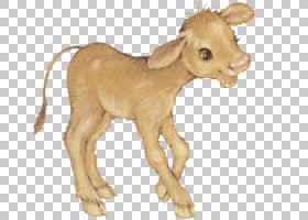 山羊绵羊Caprinae动物,小牛PNG剪贴画哺乳动物,动物,牛山羊家庭,图片
