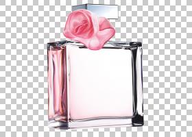 淡香水香水Ralph Lauren Corporation沉香木,茉莉花瓣PNG剪贴画杂