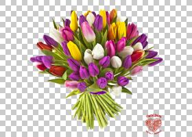 花束郁金香礼物花卉,郁金香PNG剪贴画紫色,插花,丝带,颜色,花卉,