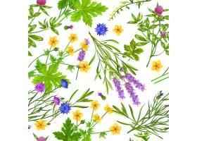 植物花卉矢量背景图案
