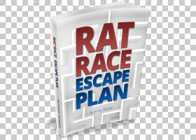 老鼠赛跑YouTube图书老鼠王,老鼠和老鼠PNG clipart动物,文本,作图片