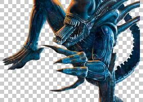 外星人与捕食者2外国人与捕食者2艾伦里普利外星人与捕食者,安魂图片