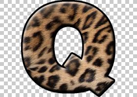 字母字母初始,q字母PNG剪贴画杂项,哺乳动物,猫像哺乳动物,食肉动