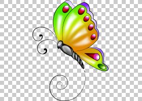 蝴蝶画蝴蝶PNG剪贴画刷有脚蝴蝶,昆虫,花卉,桌面壁纸,数字图像,授