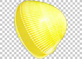 贝壳线PNG剪贴画动物,艺术,线条,贝壳,黄色,2193550