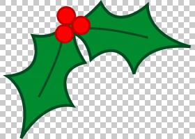 叶子圣诞节槲寄生树,圣诞节糖果PNG clipart草,植物茎,花,植物,线
