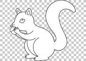 黑松鼠绘图,松鼠PNG剪贴画白色,哺乳动物,猫像哺乳动物,动物,食肉