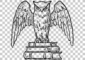 Bookplate,运输,猫头鹰PNG剪贴画动物,手,脊椎动物,单色,作者,动