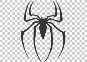蜘蛛侠标志绘图贴花,蜘蛛侠PNG剪贴画漫画,英雄,超级英雄,徽标,对