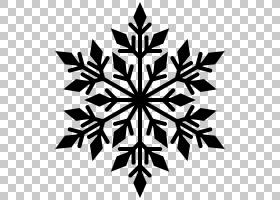 雪花剪影,雪花PNG剪贴画叶,摄影,雪花,单色,对称,颜色,树,符号,雪