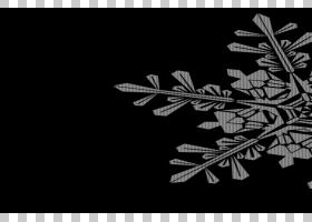 雪花文件格式,雪花PNG剪贴画图像文件格式,对称性,封装的PostScri