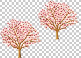 树开花分支,春天樱花树花材料PNG剪贴画叶,颜色,生日快乐矢量图像