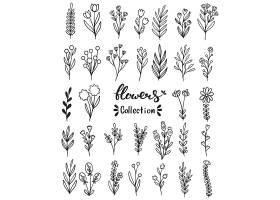 清新单色手绘各式植物叶子花卉素材设计