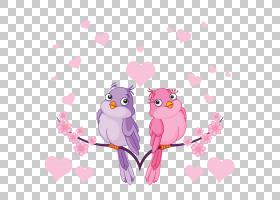 爱情鸟PNG剪贴画爱,杂项,摄影,心,分支机构,其他,脊椎动物,计算机