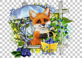 狐狸黑暗之触康涅狄格州其他PNG剪贴画杂项,哺乳动物,食肉动物,标