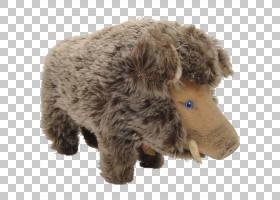 狗品种小狗牛毛绒动物和可爱的玩具公猪PNG clipart哺乳动物,动物