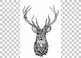 画家画版画独角兽头PNG剪贴画鹿角,哺乳动物,野生动物,当代艺术,