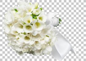婚礼弗雷兹娅小苍兰的鲜花花束婚礼鲜花PNG剪贴画插花,白色,假日,