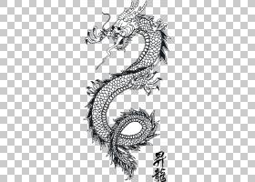 中国模式,黑白,绘图,字体,线路,设计,圆,符号,模式,线条艺术,植物